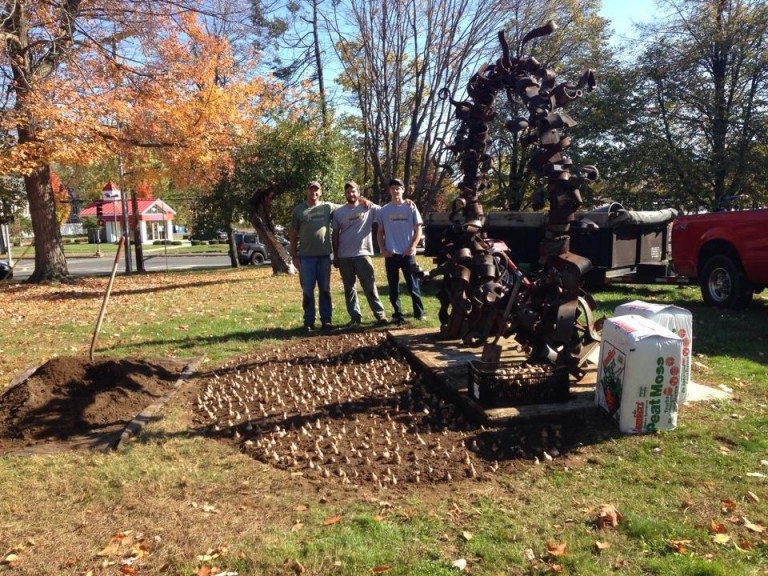 About Us. Busy Bee Landscaping ... - Daffodil Plantings – Busy Bee Landscaping Amherst MA, 01002